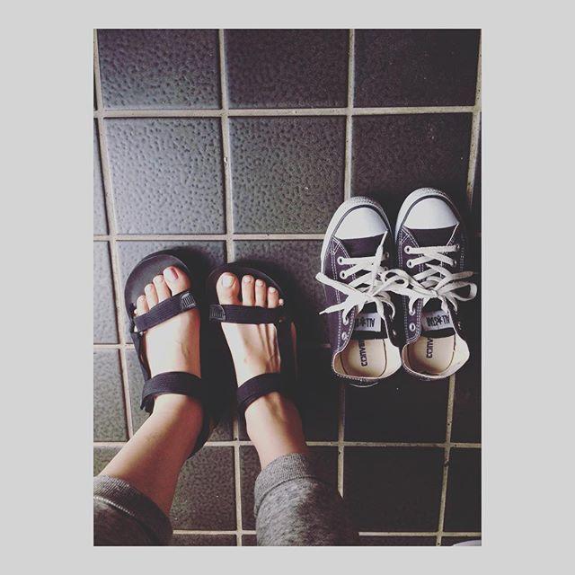 Instagram (7932)